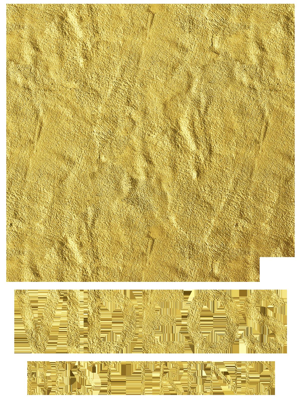Best Trend Videos Logo